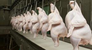 Rynek drobiu: MHP zainteresowany przejęciem potentata ze Słowenii