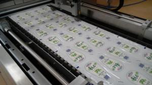 OSM Piątnica promuje produkty ekologiczne (galeria)