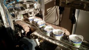 Zdjęcie numer 5 - galeria: OSM Piątnica promuje produkty ekologiczne (galeria)