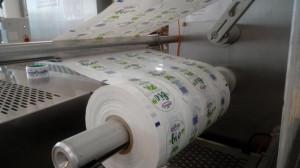 Zdjęcie numer 19 - galeria: OSM Piątnica promuje produkty ekologiczne (galeria)