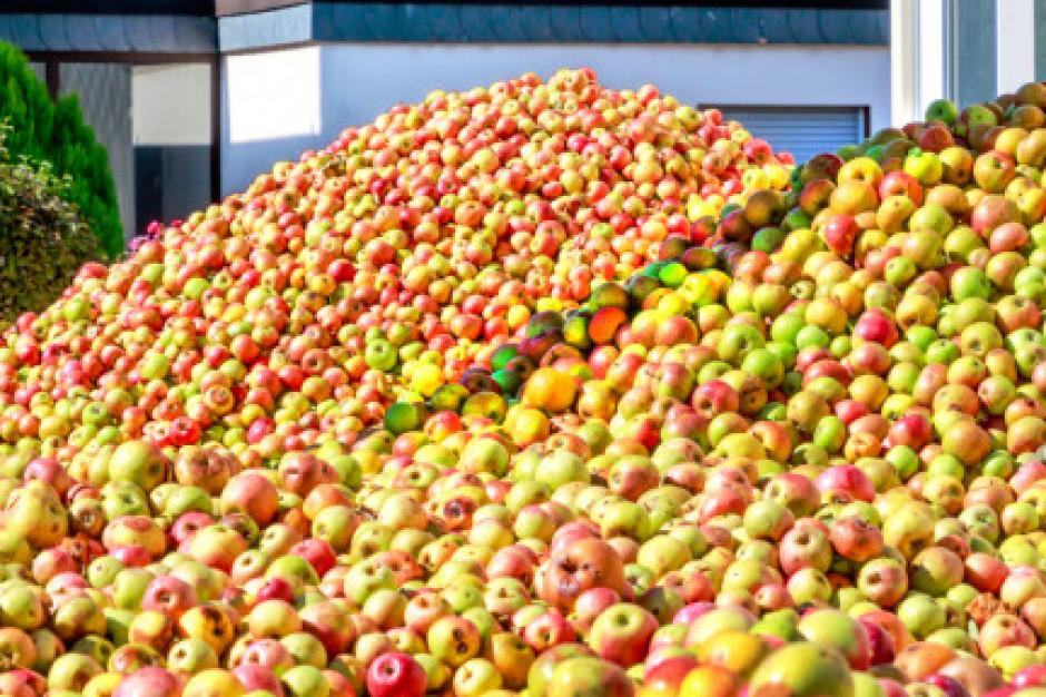 Eskimos podpisze umowę z BOŚ Bank w ramach kredytowania rządowego skupu jabłek
