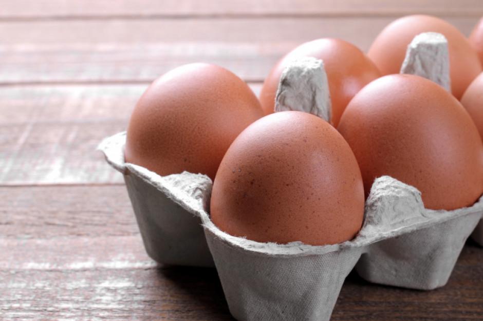 Rośnie znaczenie przetwórstwa na rynku jaj w Polsce