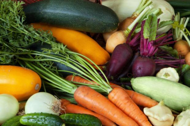 Raport z rynku warzyw i analiza cen - IERiGŻ