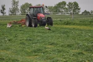 ARiMR: rolnicy otrzymali ponad 350 mln zł zaliczkowych dopłat bezpośrednich