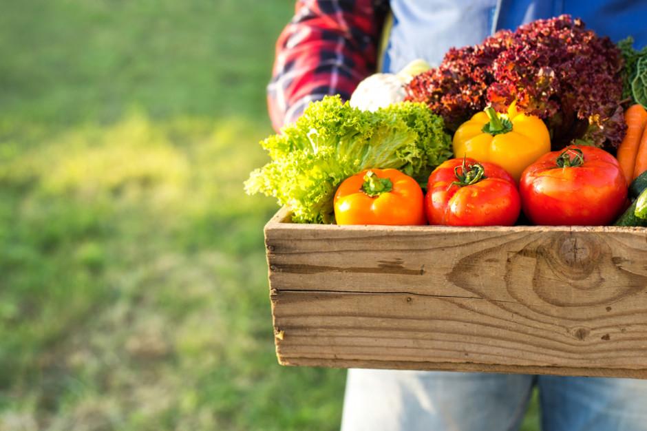 UOKiK: Zarzuty dla ośmiu przedsiębiorców ws. dostaw żywności