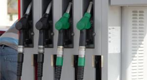 Eksperci o cenach paliw przed Bożym Narodzeniem: Na stacjach powinno być taniej