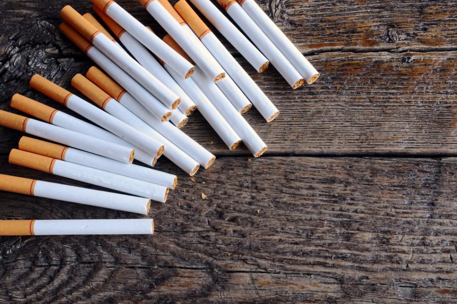 W Lubuskiem KAS przejęła nielegalne papierosy warte 5,2 mln zł