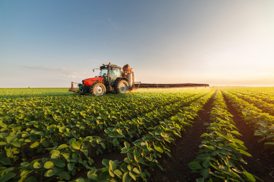 Ministerstwo Rolnictwa chce poluzować obrót ziemią rolną