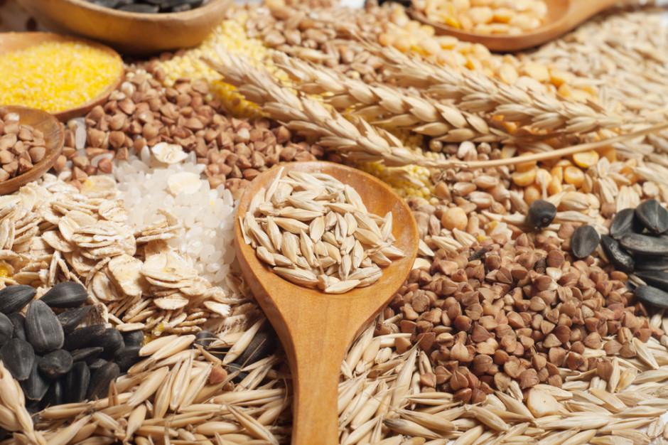 Ukraina: Stan wojenny nie wpływa na dostawy zbóż