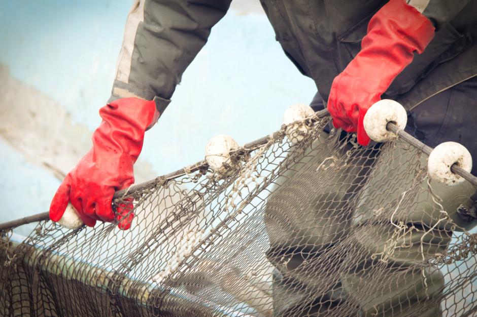 Gospodarstwo rybackie GPW rozpoczyna przedświąteczne połowy