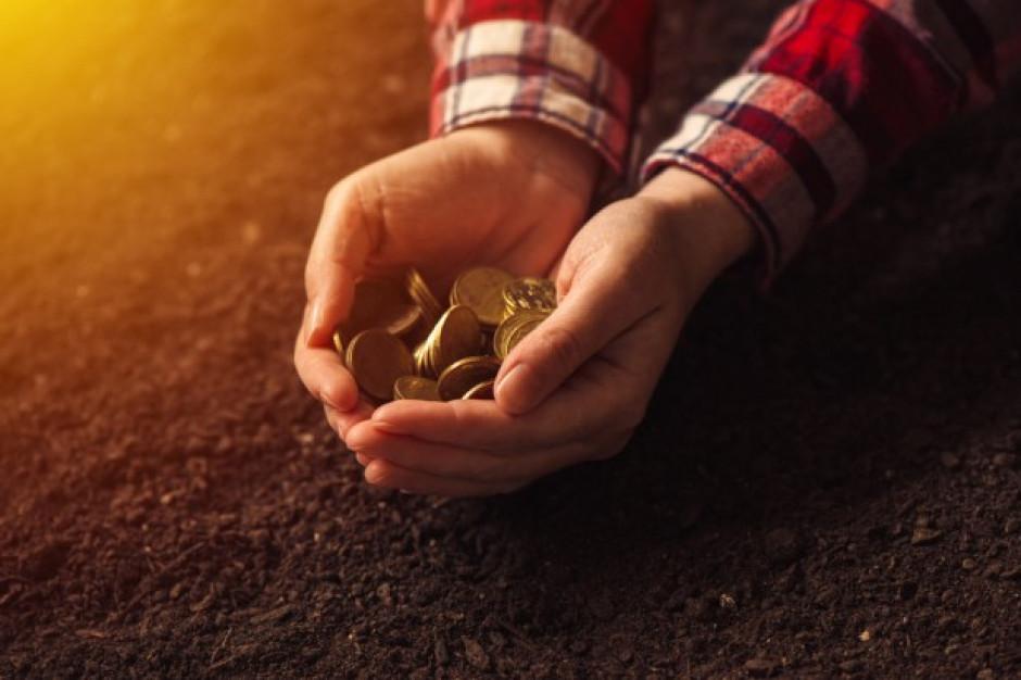 W 2018 r. dochody rolników spadły