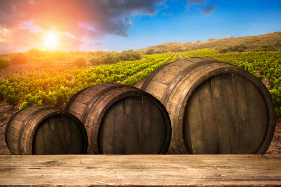 Polacy zaczynają produkować więcej wina