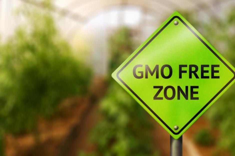 Pasze GMO dozwolone do stosowania przez kolejne dwa lata