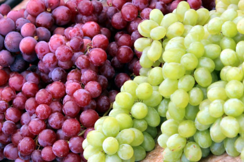 Australia: igły w winogronach z supermarketu