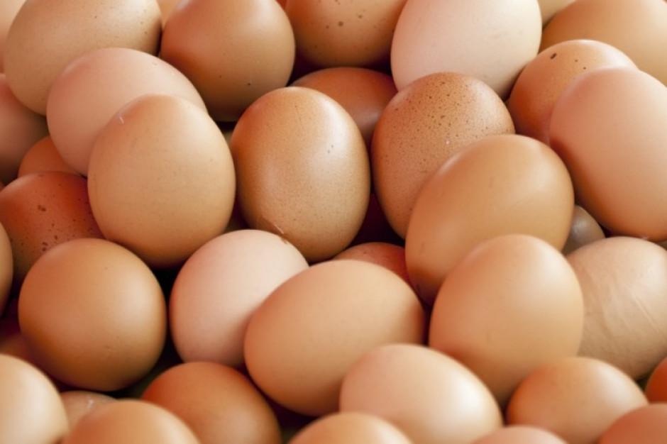 Rośnie eksport polskich jaj do Arabii Saudyjskiej