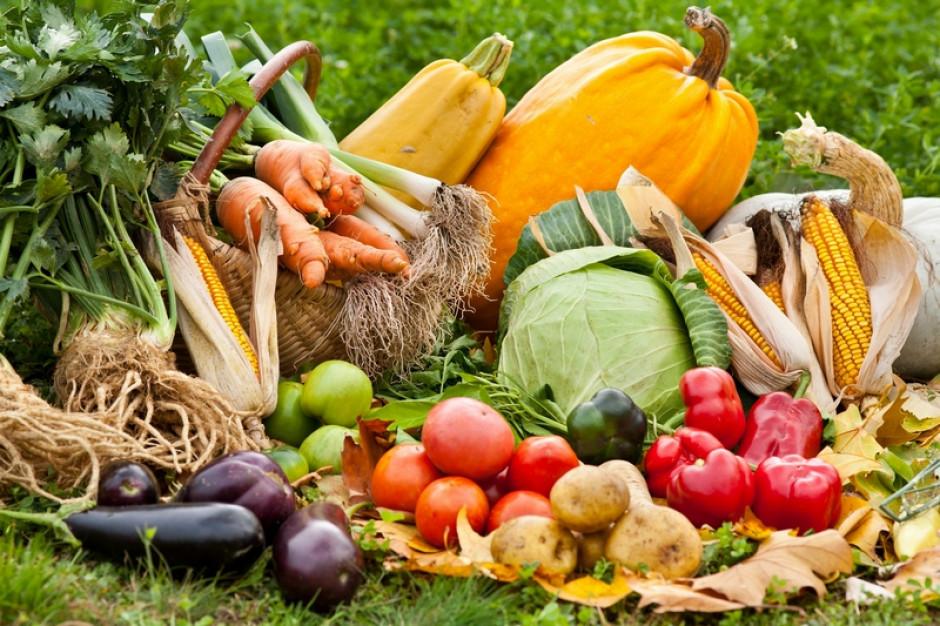 Первые овощи из собственного сада - как сеять ранние семена овощей