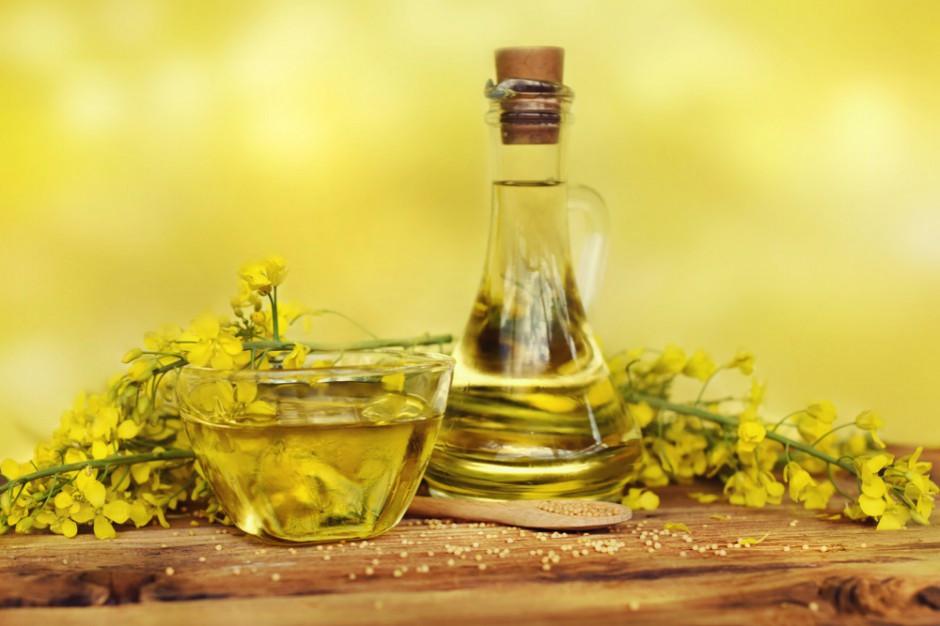 PSPO: W 2018 r. wzrosła krajowa produkcja oleju rzepakowego