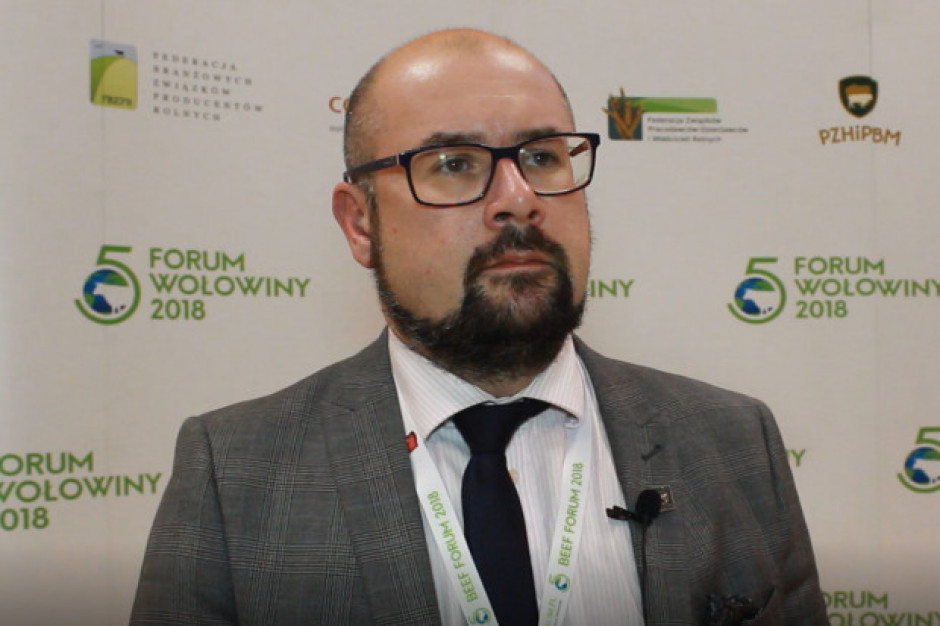 Prezes PZHiPBM: Straty producentów bydła w 2019 roku mogą sięgnąć 600 mln zł