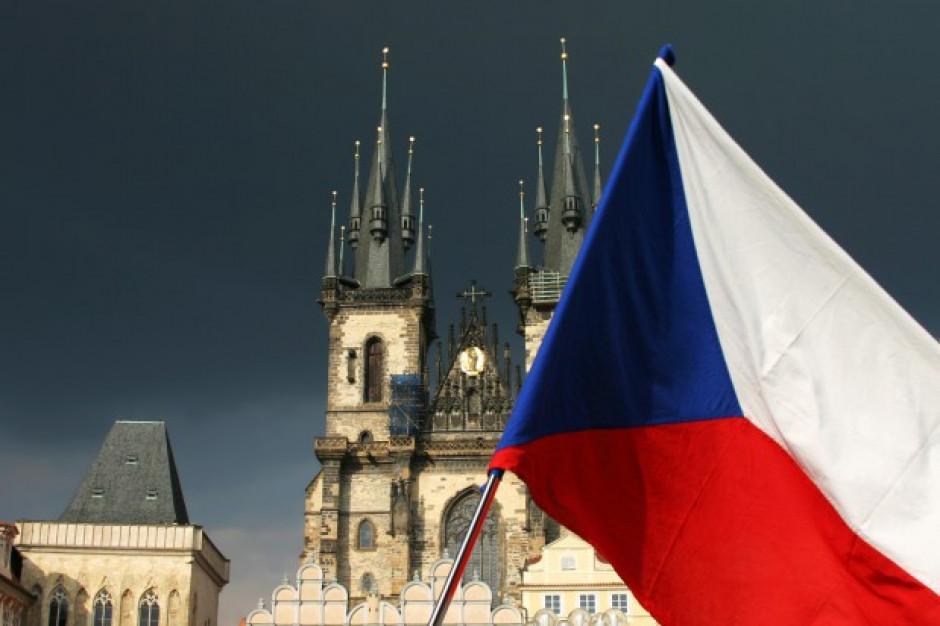 Czechy wciąż rozważają zakaz importu wołowiny z Polski