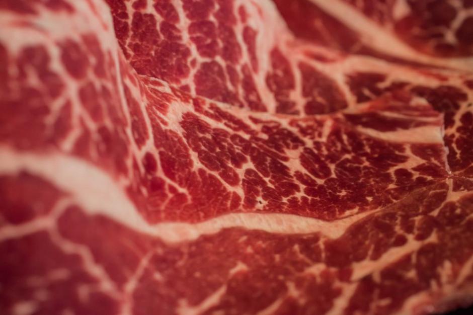 Czechy: Połowa podejrzanego mięsa z Polski nie trafiła do konsumentów
