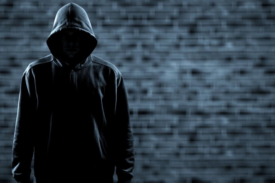 Wielkopolskie: Zatrzymano złodzieja, który ukradł naczepę chipsów