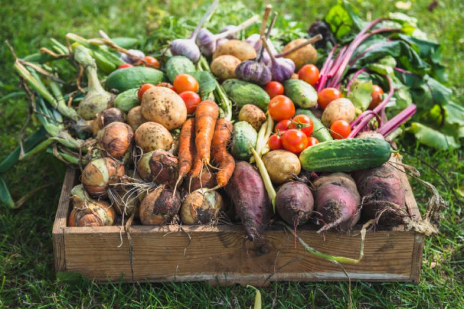 Żywność ekologiczna podbija szwajcarski rynek