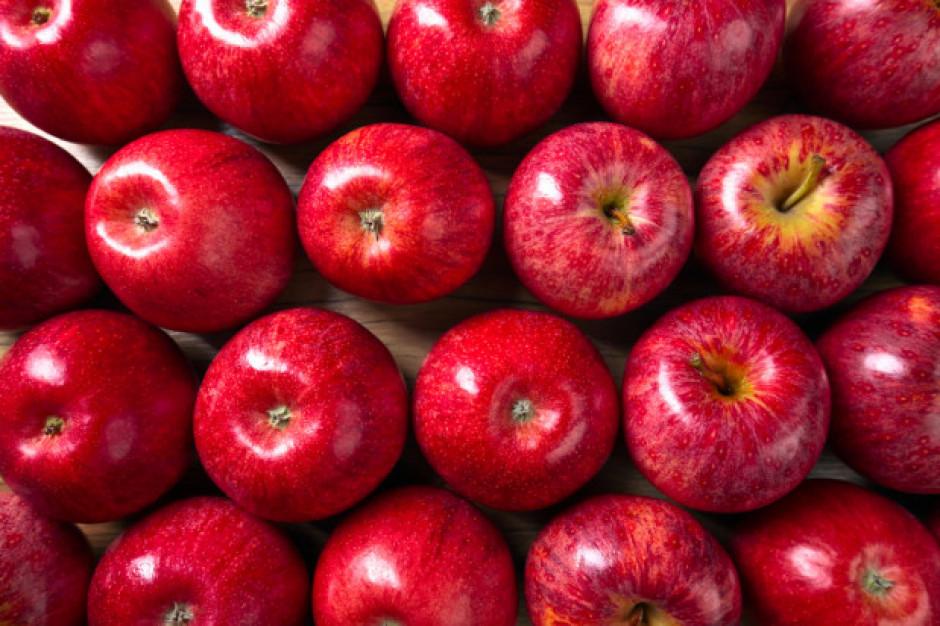 Niepokojący wzrost produkcji jabłek w Polsce