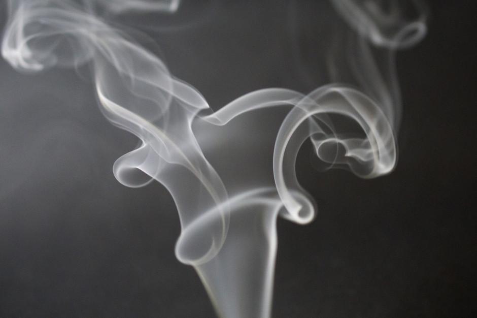 Zlikwidowano nielegalną fabrykę papierosów w Ostrowie Wlkp.