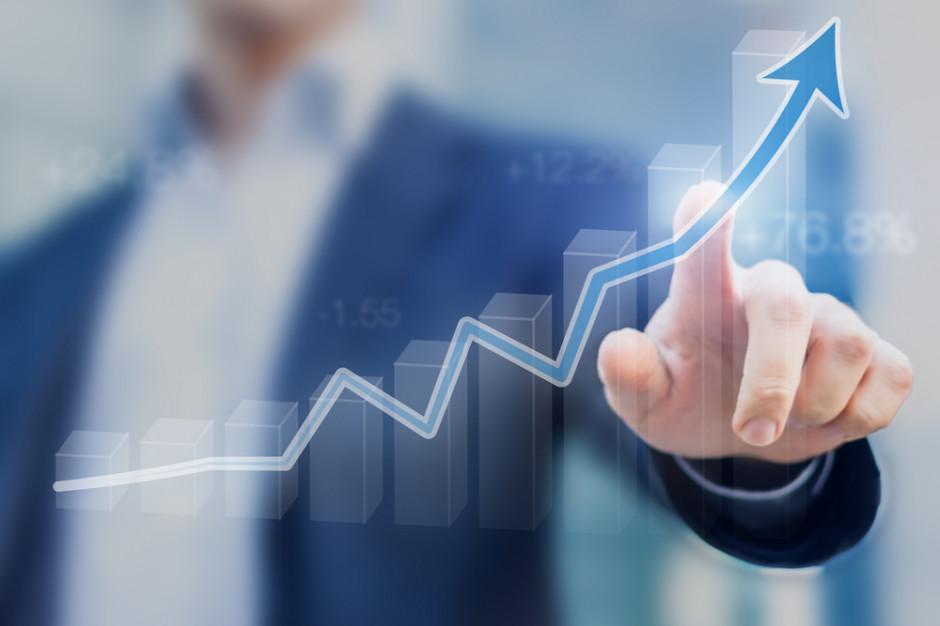 Bank Pekao: Rok 2018 był rokiem najlepszej od dziewięciu lat koniunktury dla sektora MSP