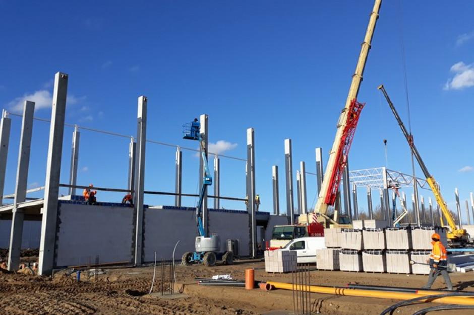 Panattoni Europe buduje fabrykę w Stargardzie