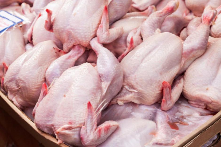 Inspekcja Weterynaryjna: salmonella w drobiu pochodzącym ze Słowacji
