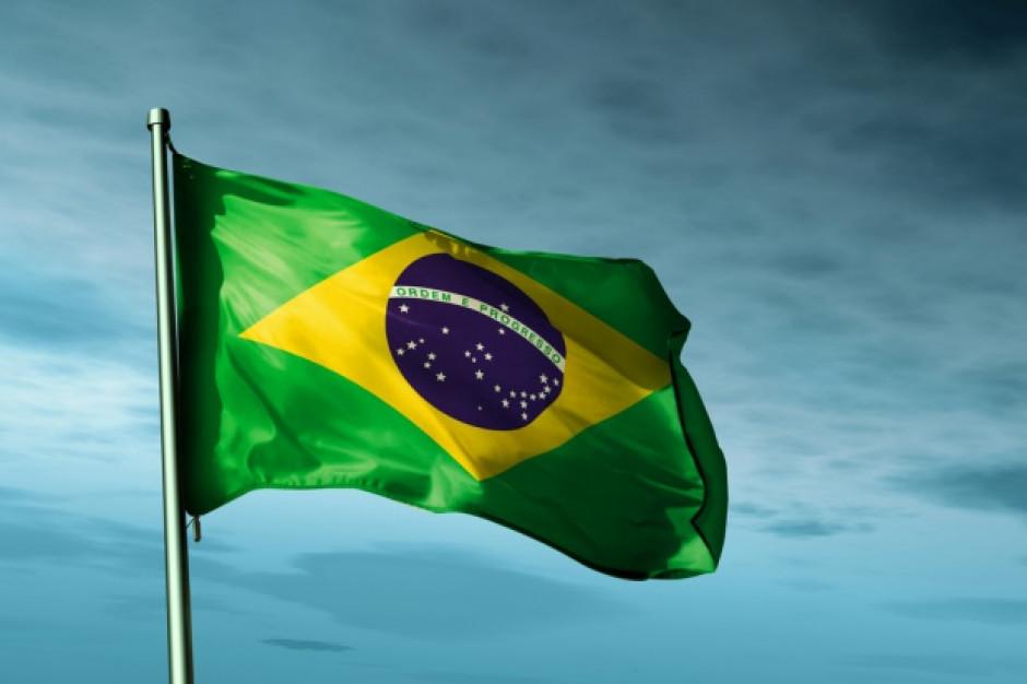 Brazylijskie drobiarstwo odzyskuje siły