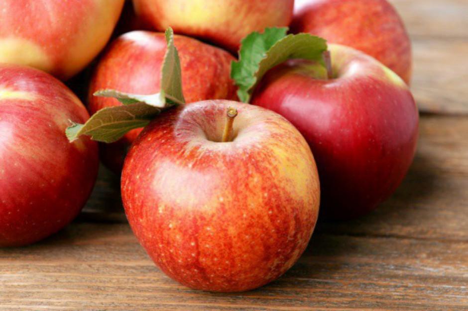 AGROunia rozdaje jabłka w centrum Warszawy