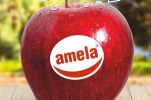"""""""Amela"""" - jabłko z """"czystą etykietą"""". Powstała nowa marka polskich owoców"""