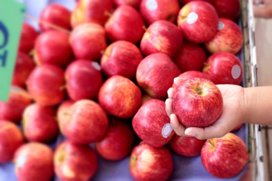 Kanada chce importować jabłka z Ukrainy
