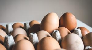 ISS World wycofa jaja klatkowe do 2025 roku