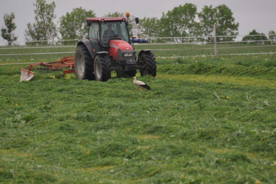 ARiMR: Rolnicy przesłali już 78 tys. wniosków o dopłaty bezpośrednie