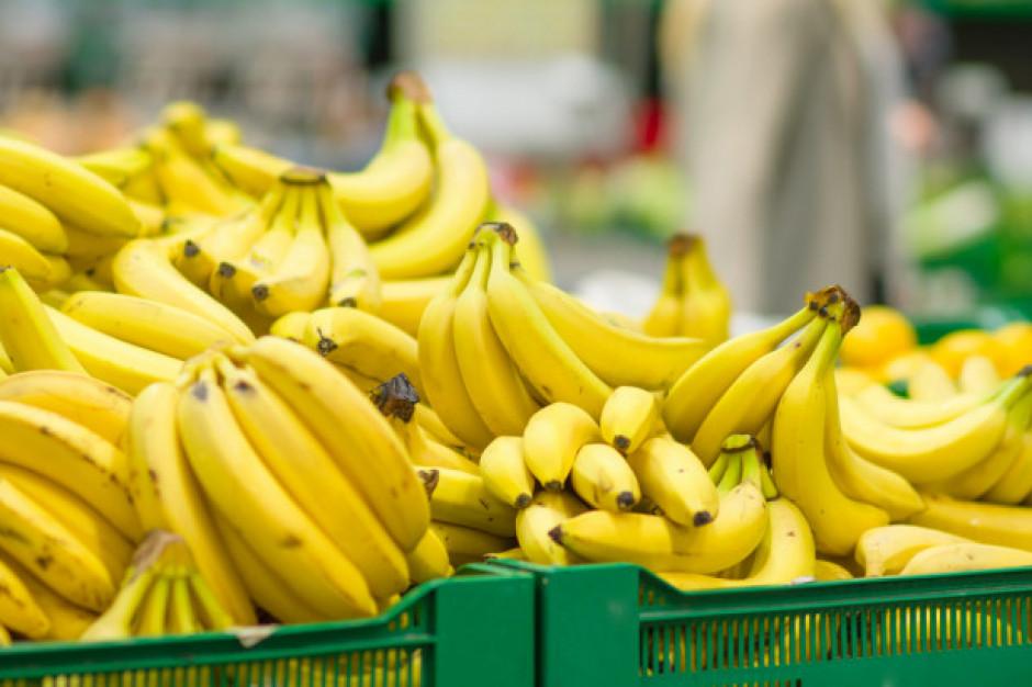 W kartonie z bananami z Ekwadoru znaleziono kokainę