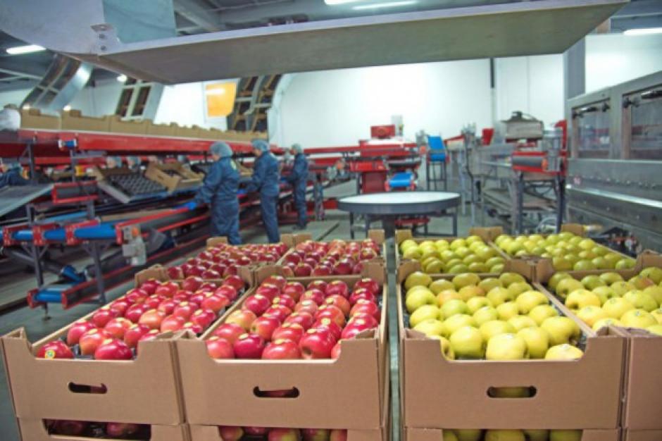 Mińsk ograniczy reeksport do Rosji warzyw i owoców