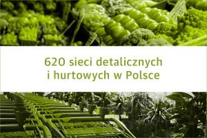 Lista 620 sieci detalicznych i hurtowych w Polsce - edycja 2019