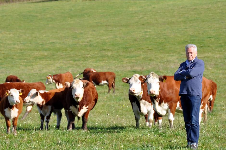 Mięso na wtorek: Wołowina z Warmii podbija rynek przez internet