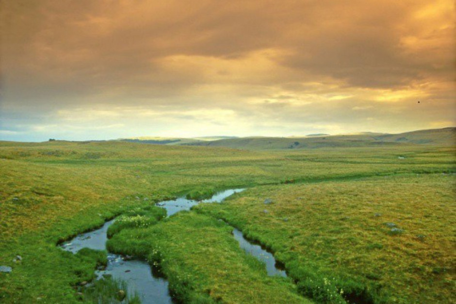 Lepsze życie w pobliżu obszarów chronionych