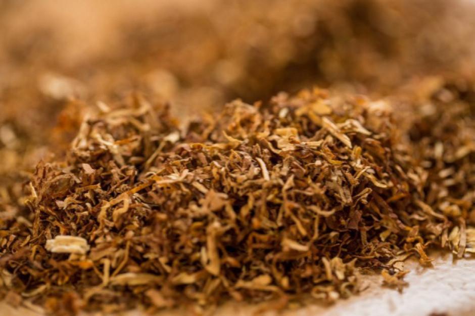 Policja przejęła blisko 200 kg krajanki tytoniowej