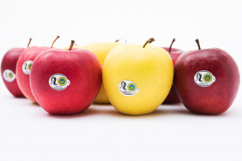 Jabłka Grójeckie wprowadzają usługę dostawy jabłek do firm