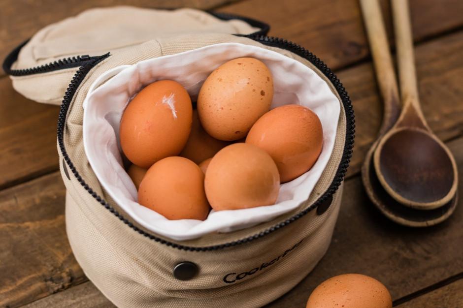 Co jest największym utrudnieniem dla firm w wycofaniu jaj z chowu klatkowego? (raport)