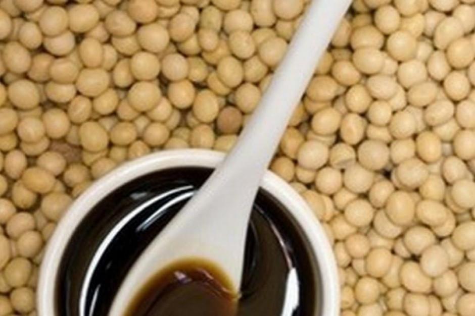 KE chwali się wzrostem importu amerykańskiej soi do UE