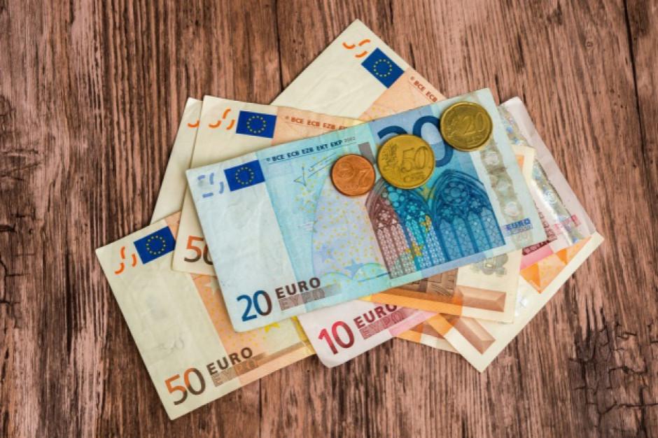 Zmienne losy euro w Polsce
