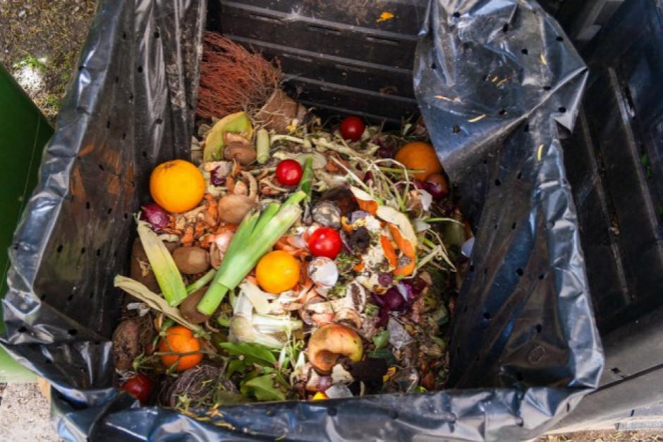 BIG InfoMonitor: rocznie statystyczny Polak wyrzuca do kosza 235 kg jedzenia