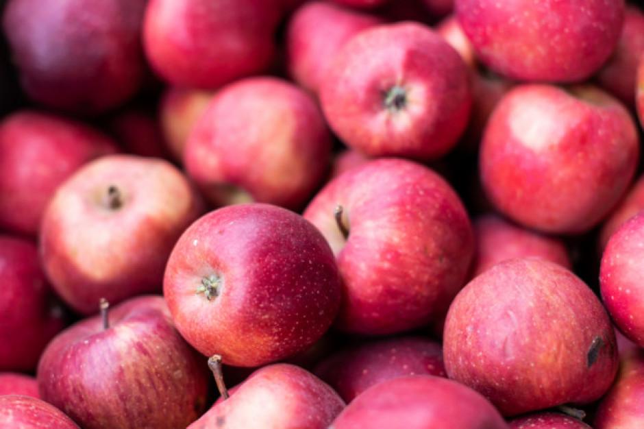 Ceny jabłek w Chinach biją rekordy