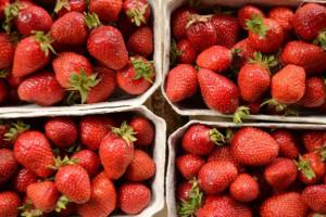 Truskawki: Owoców jest mało i są drogie
